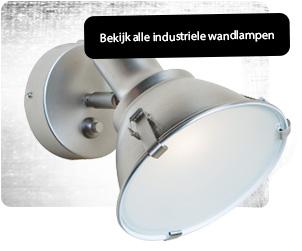 stoere industriele wandlamp